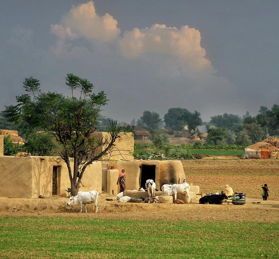 The Village Of Punjab Photograph by Nadeem Khawar