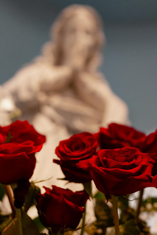 Rose Photograph - The Virgin with Roses by Christine Buckley