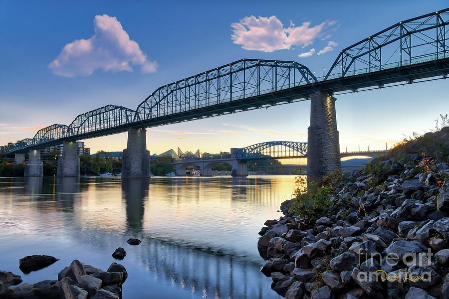The Walnut Street Bridge by David Levin