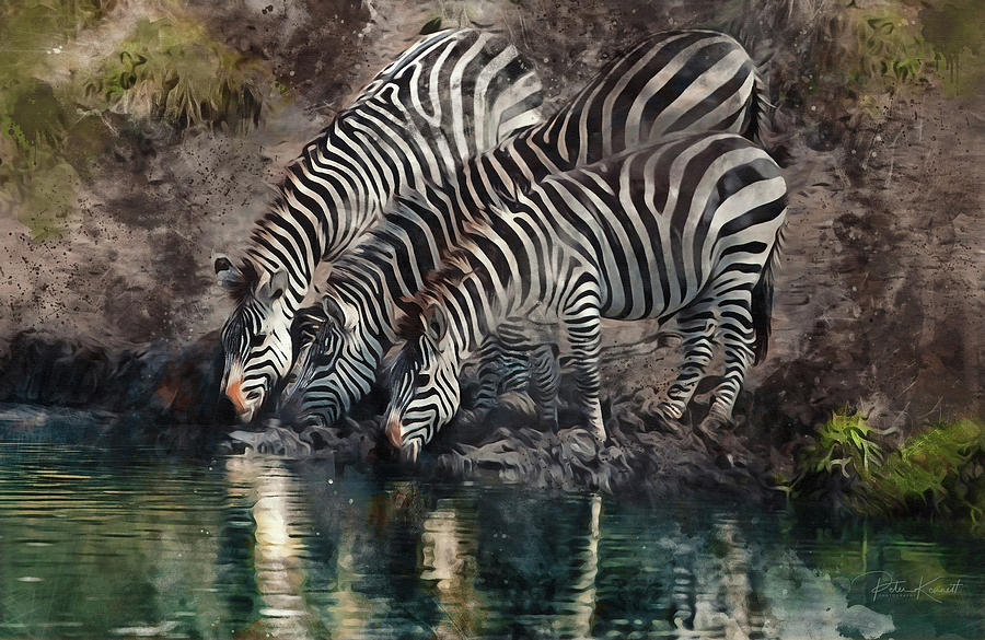 The Waterhole by Peter Kennett