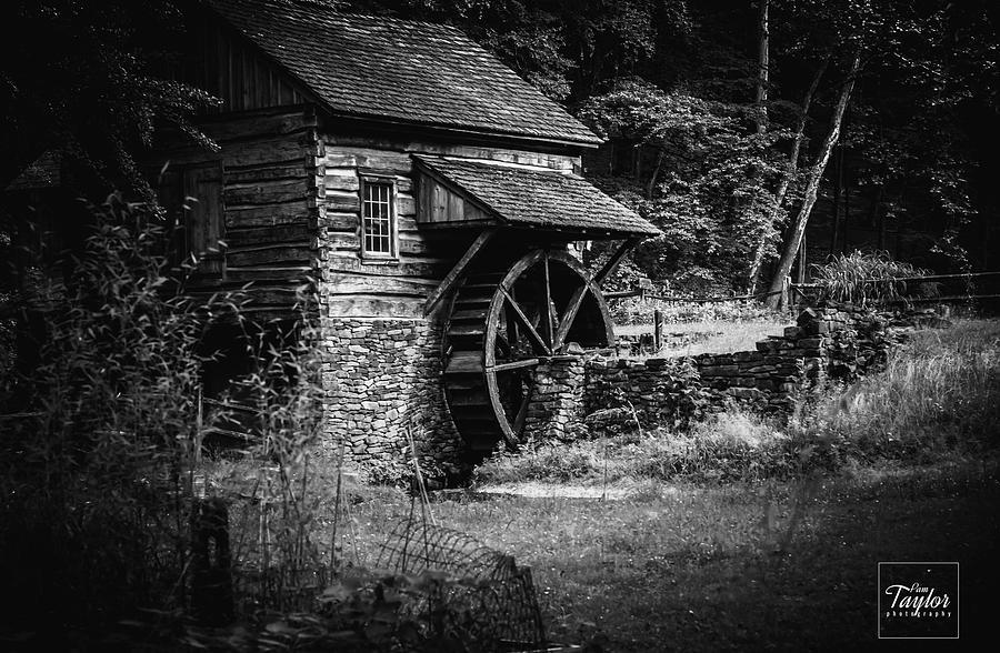 The Waterwheel by Pamela Taylor