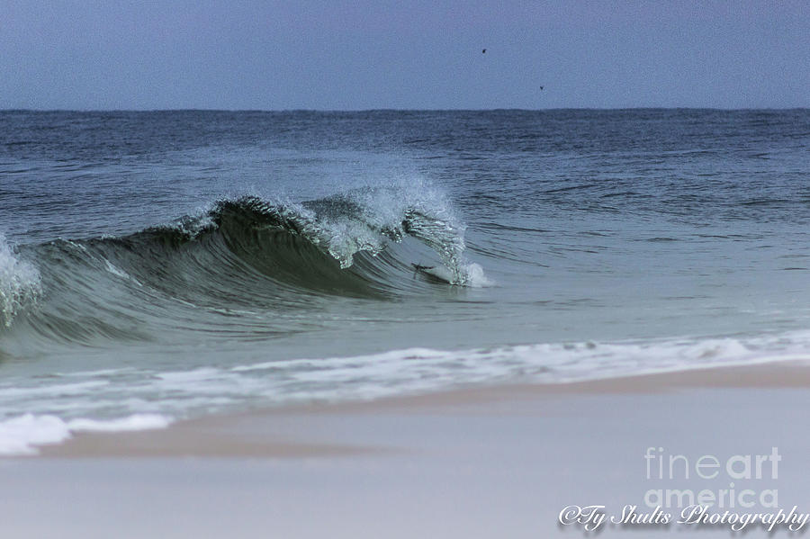 The Wave by Ty Shults