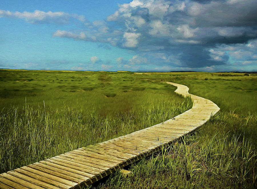 The Winding Boardwalk by Russ Harris