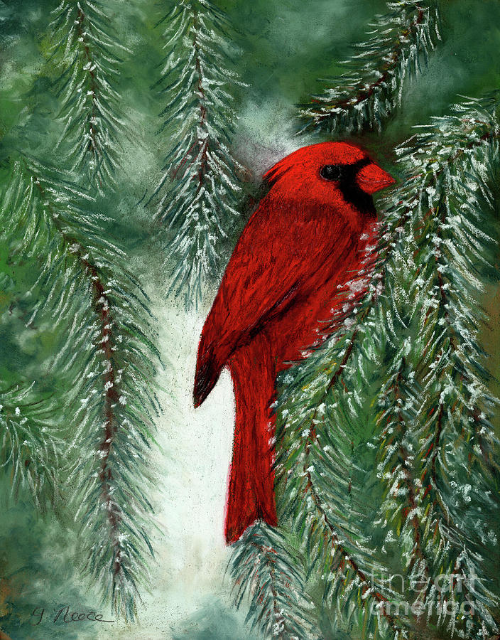 The Winter Cardinal by Ginny Neece