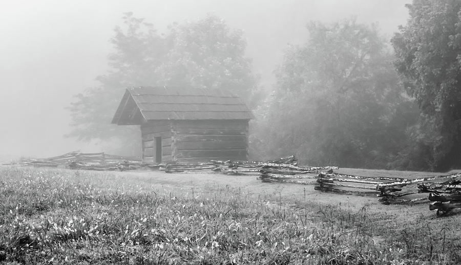 The Woodshed on a Foggy Morning, Black and White by Marcy Wielfaert