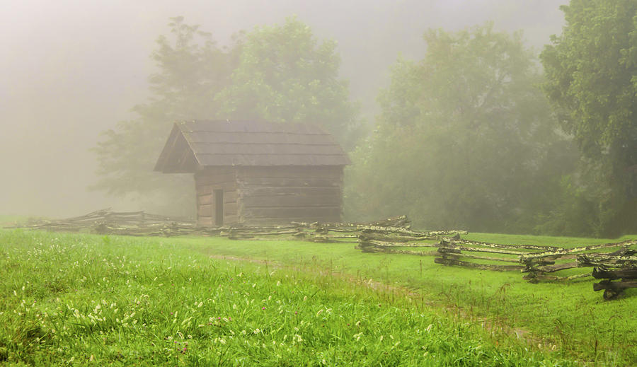 The Woodshed on a Foggy Morning by Marcy Wielfaert