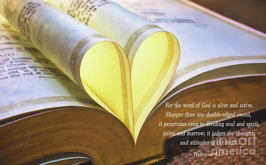 The Word Of God Hebrews 4 12 by Sharon McConnell