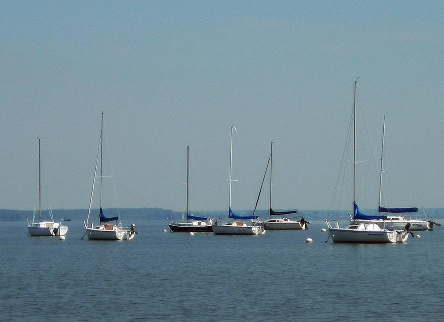 The Yacht Club Photograph