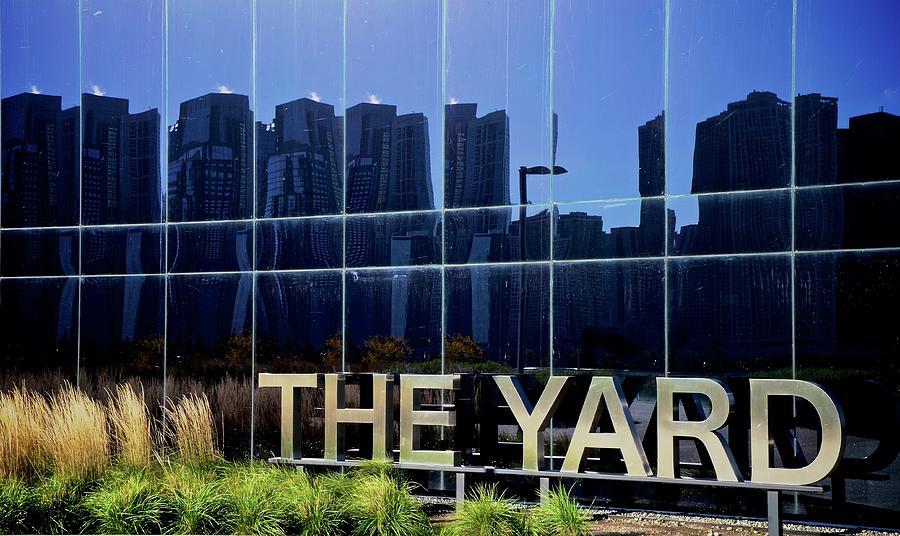 The Yard by Corinne Rhode