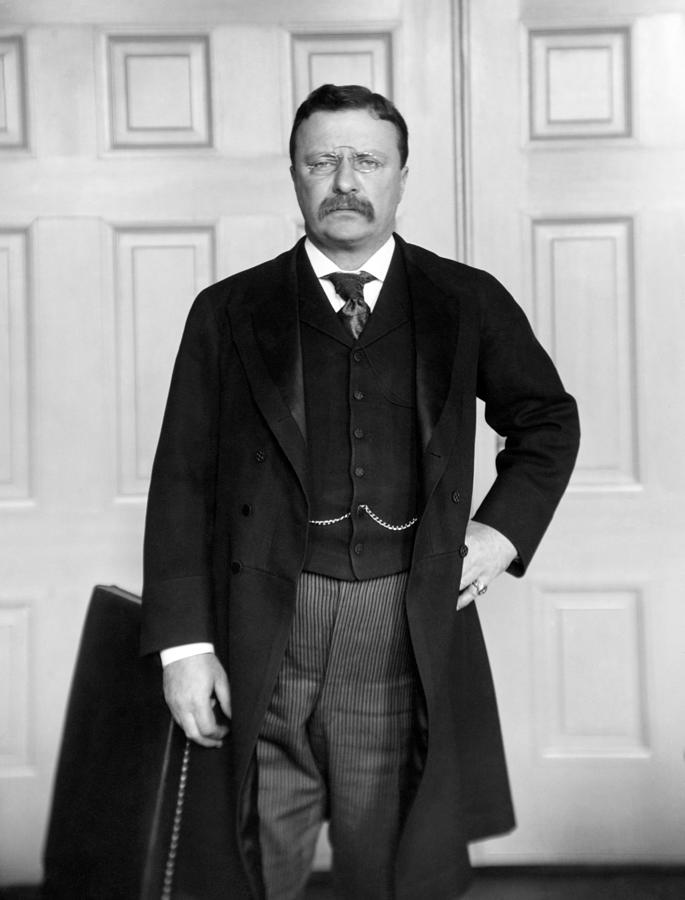 Theodore Roosevelt In His Office by War Is Hell Store