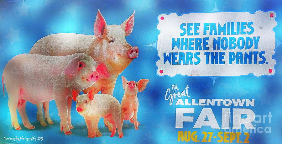 These Little Piggies Went To The Fair by Tami Quigley