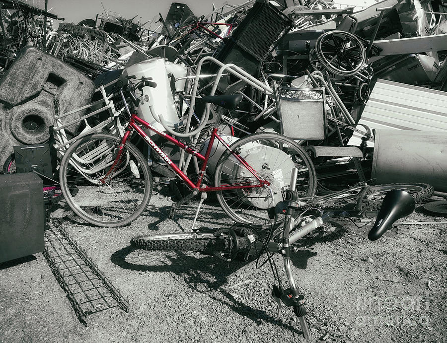 Bicycle Photograph - Things That Cycle  by Steven Digman
