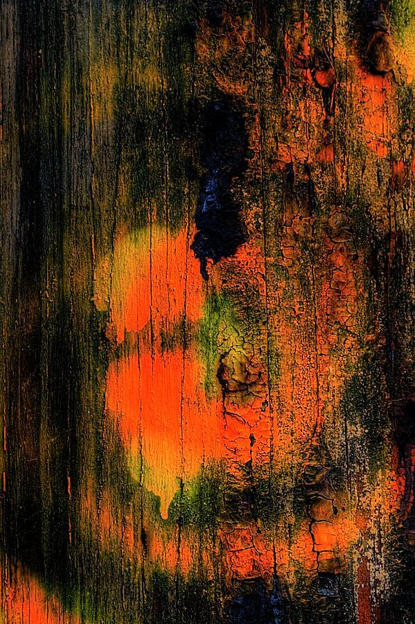 Third Street Bridge Orange Face by Jerry Sodorff