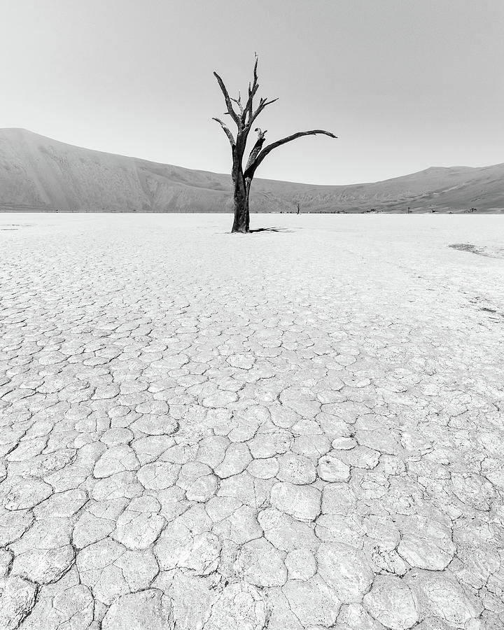 Thirst by Dalibor Hanzal