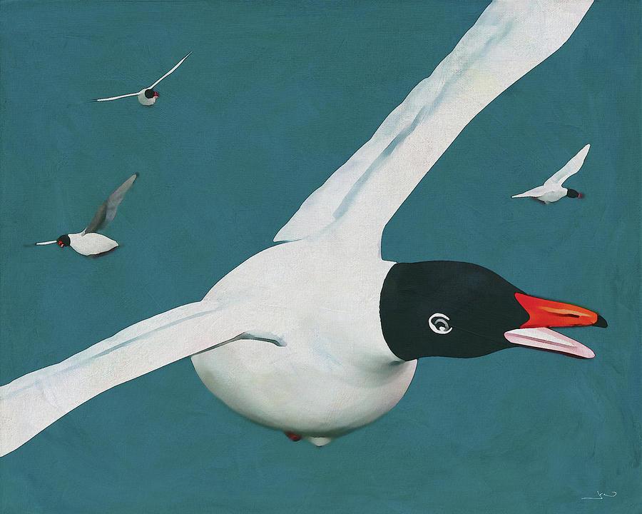 This Black Headed Gull is friendly by Jan Keteleer
