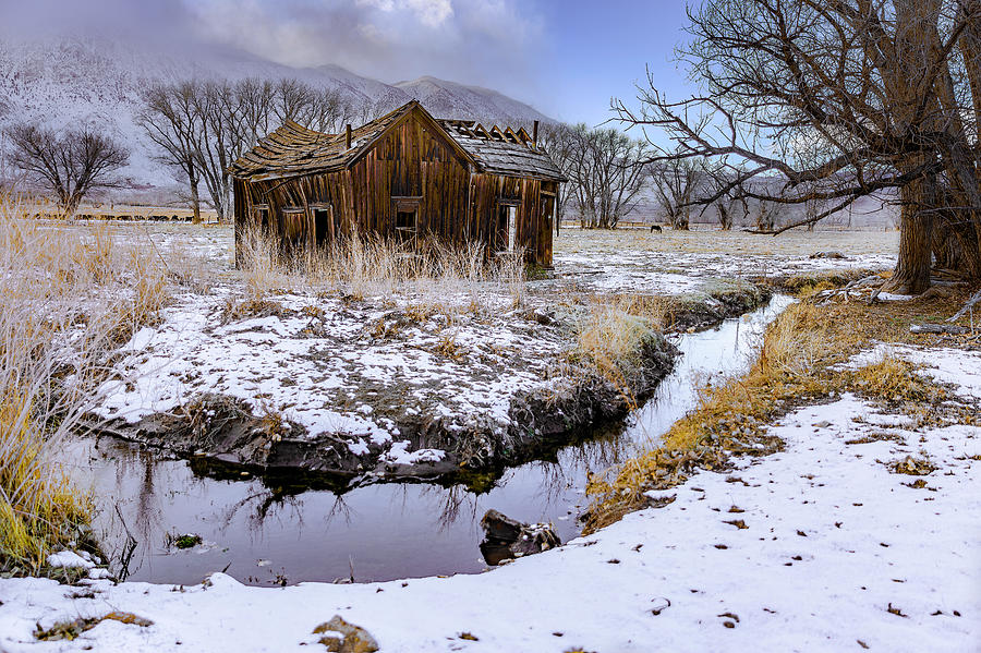 This Old House by Don Hoekwater Photography