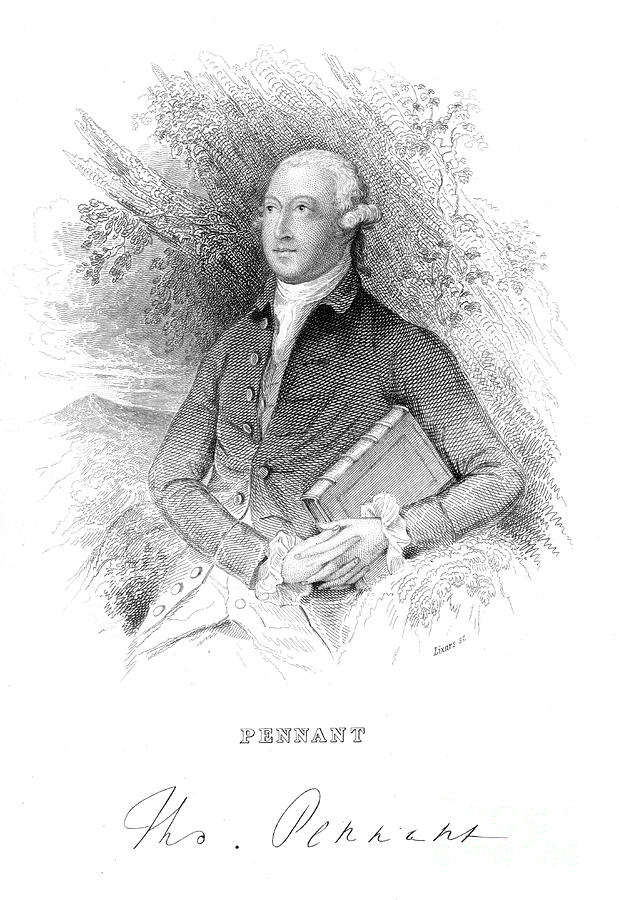 Thomas Pennant, 18th Century British Drawing by Print Collector