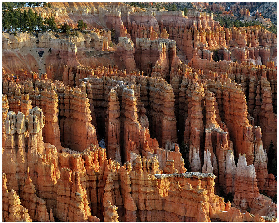 Those Hoodoos.  Bryce Canyon Photograph by John Rav