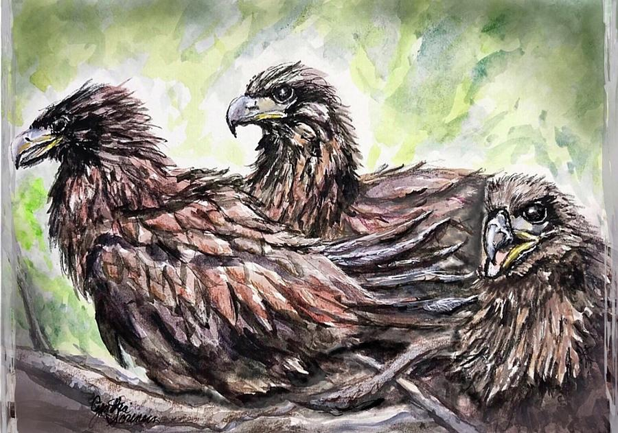 Birds Painting - Three Bald Eaglets - Fraser Point by Cynthia Sorensen