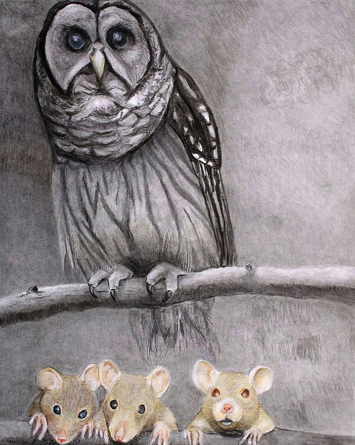 Three Blind Mice by Tim Ernst