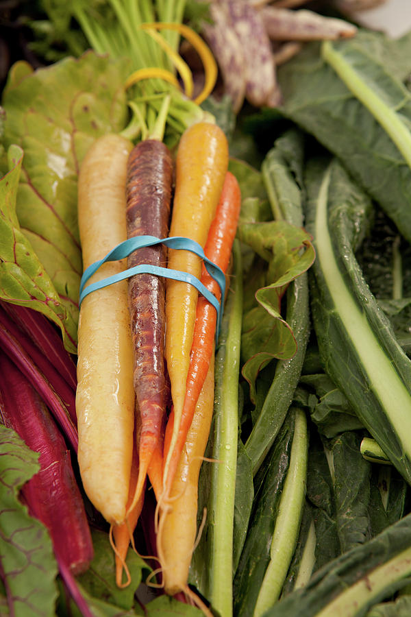 Three Colors Of Carrots Photograph by Karyn R. Millet