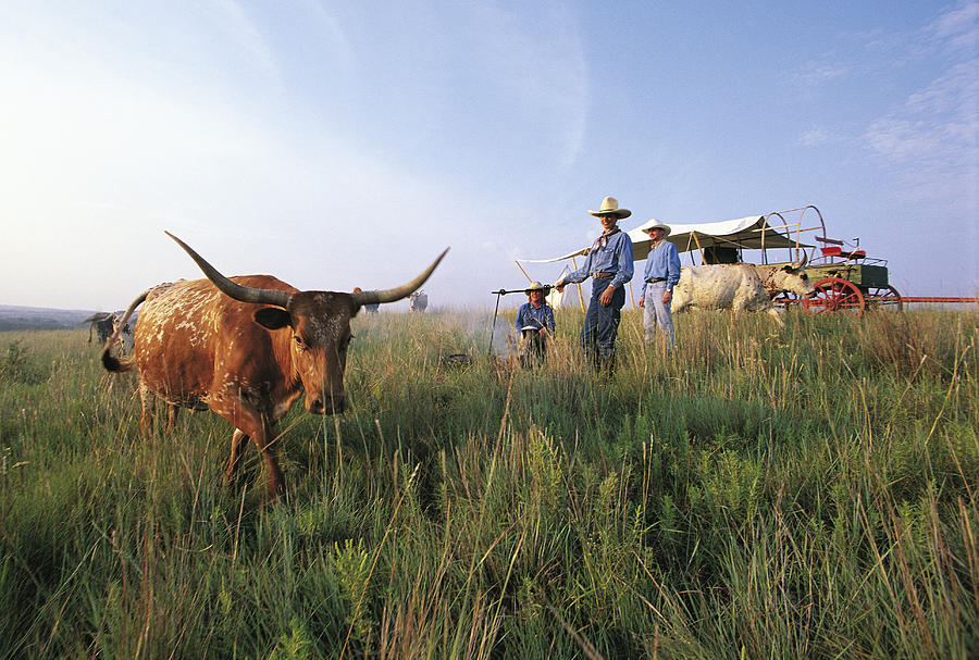 Three Cowboys Standing By Texas Photograph by Sylvain Grandadam