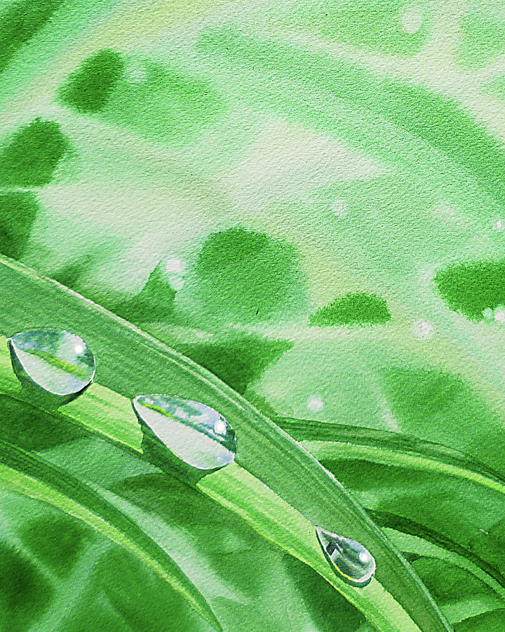 Three Dew Drops Realism In Watercolor Painting