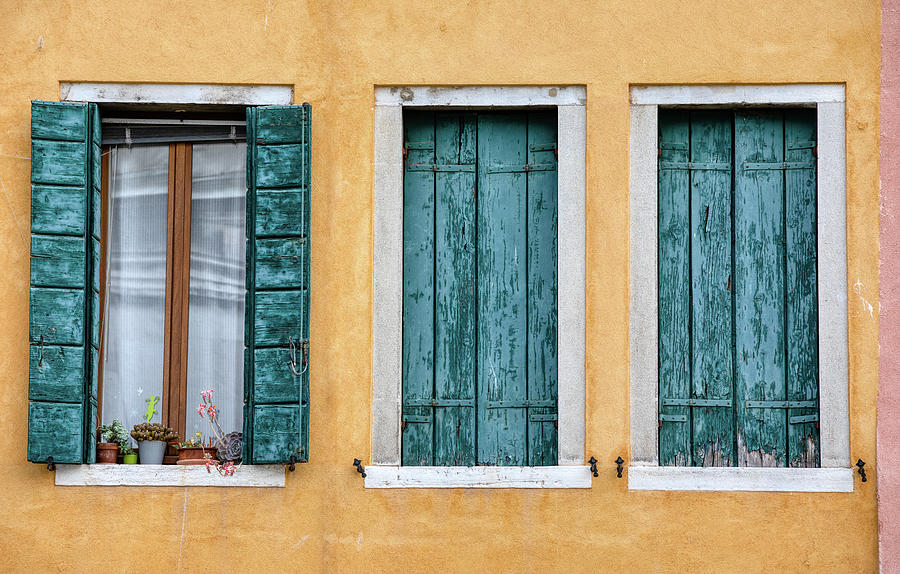 Three Green Windows of Venice by David Letts