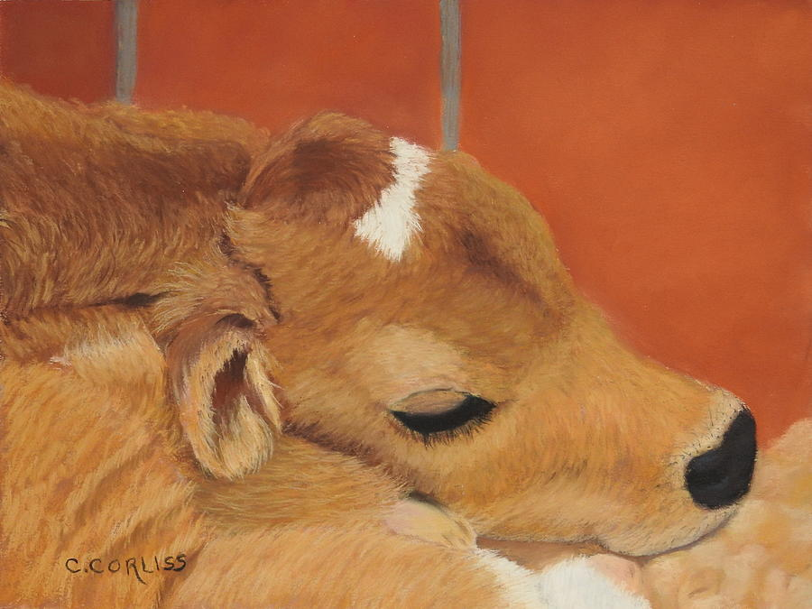 Three Hours Old by Carol Corliss