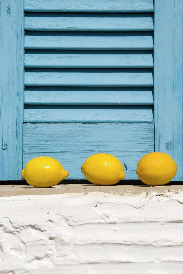 Three Lemons In A Window Photograph by Frankvandenbergh