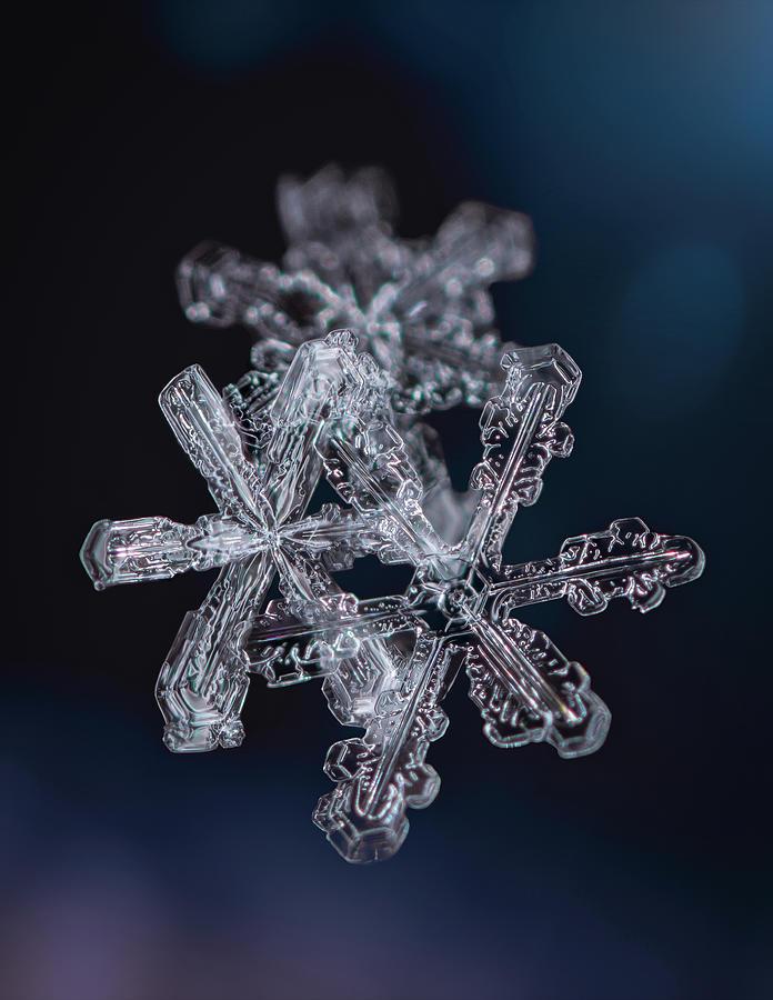 Three Snowflakes by Brian Caldwell