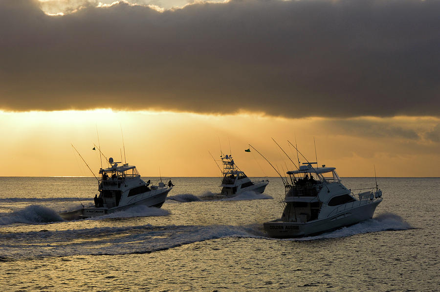 Three sport fishing boats head out off Catalina island t by David Shuler