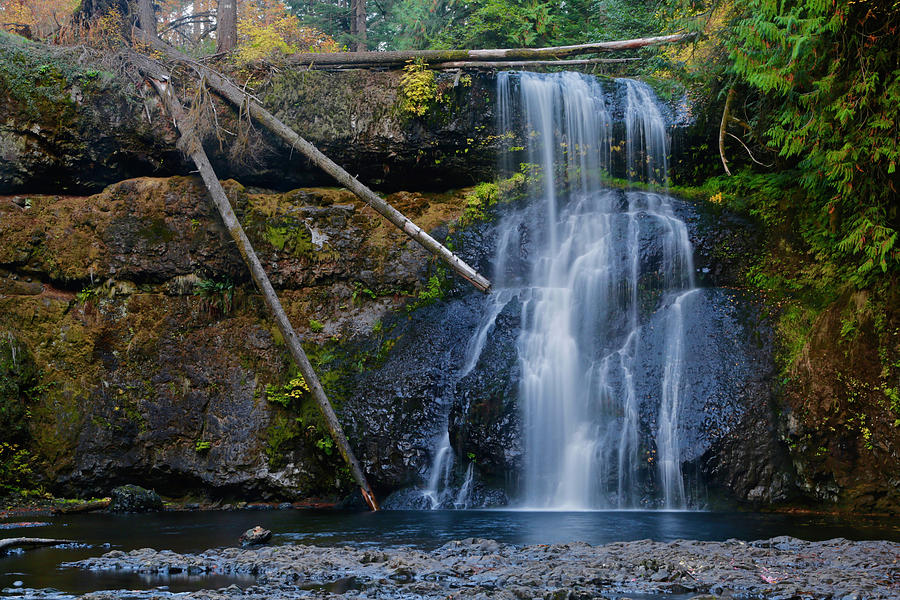 Waterfall Photograph - Three Trunk Waterfall by Susan Vizvary Photography