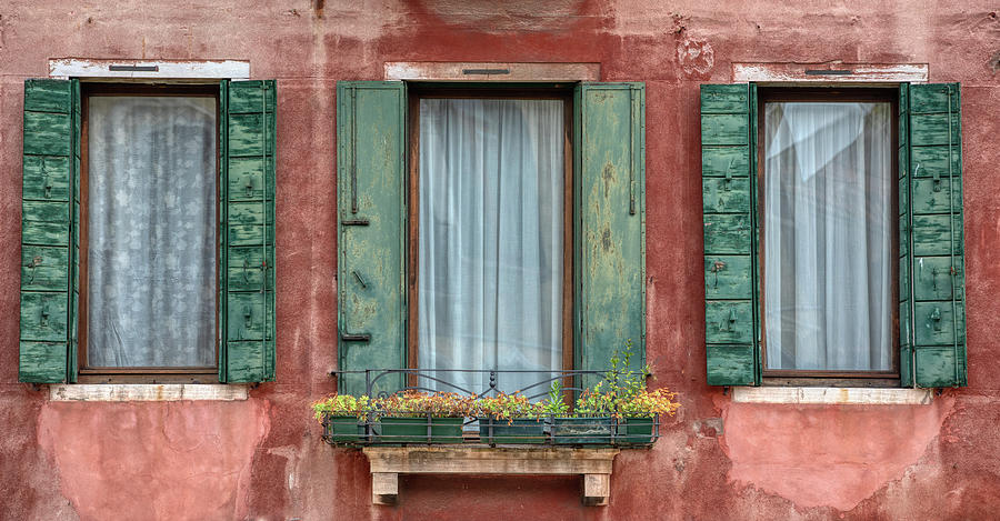 Three Windows with Green Shutters of Venice by David Letts