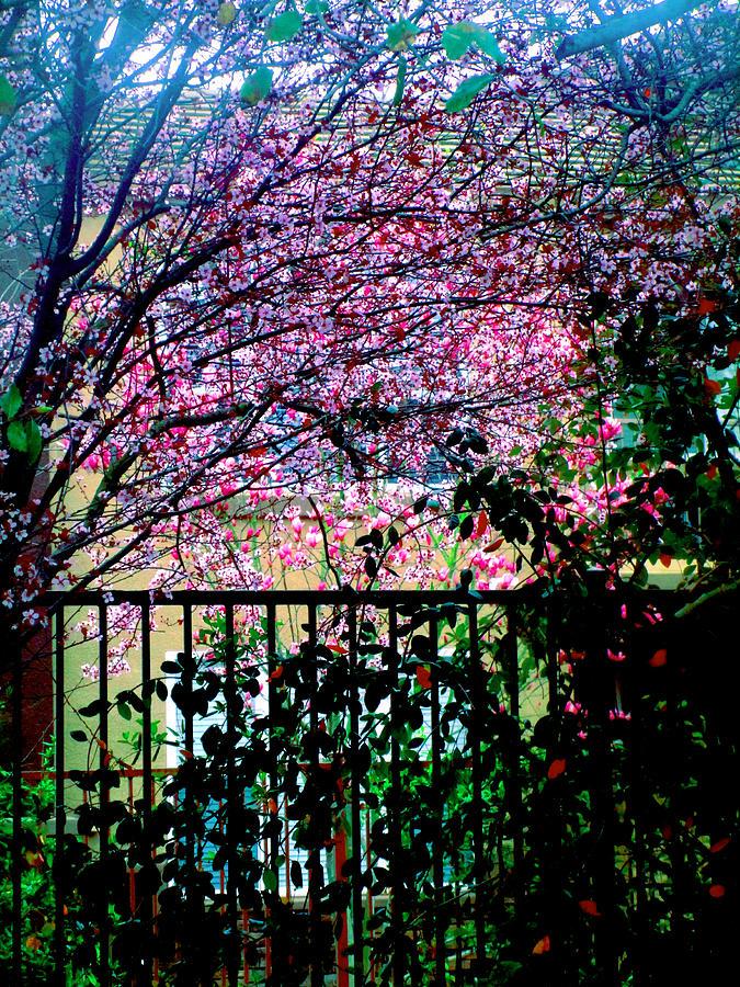 Through a Tree Darkly 2019 001 by Michael Genevro