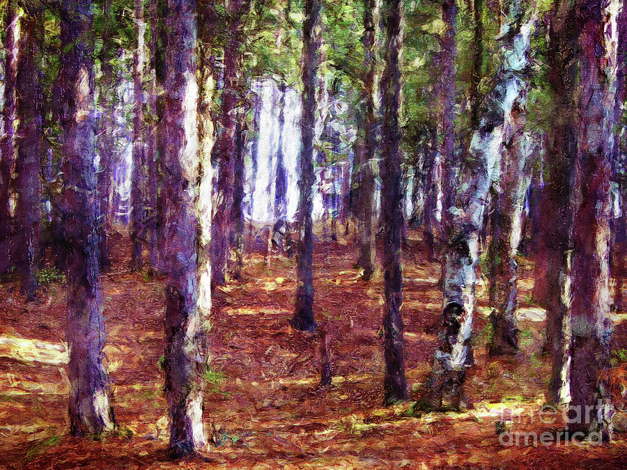 Trees Digital Art - Through The Forest by Phil Perkins