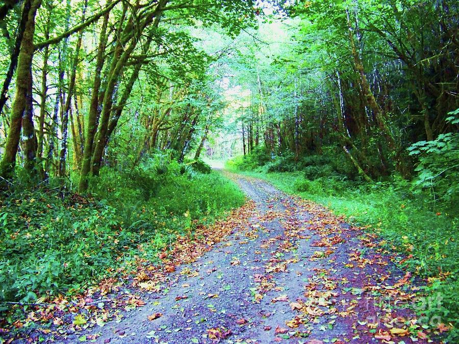 Through the Woods by Julie Rauscher