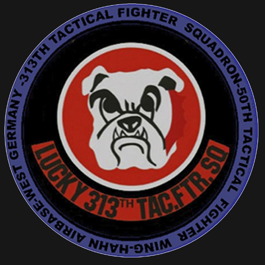 The 313th Tactical Fighter Squadron by Walter Chamberlain
