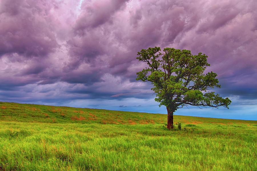 Thunderstorm Photograph by Nebojsa Novakovic