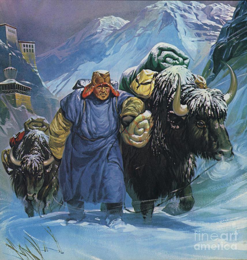 Tibet Painting - Tibet by Angus McBride