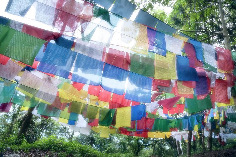 Tibetan Buddhist Prayer Flags Photograph by Glen Allison