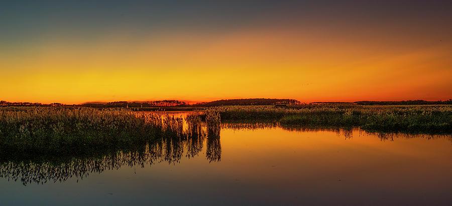 Tidal Marsh at Dawn by David Kay
