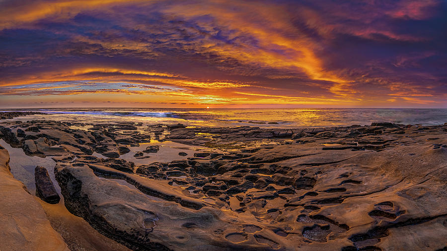 Tide Pool Magic by Peter Tellone