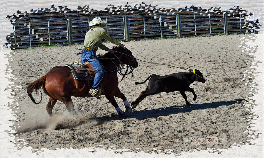 Tie Down Roper at Work by Kae Cheatham