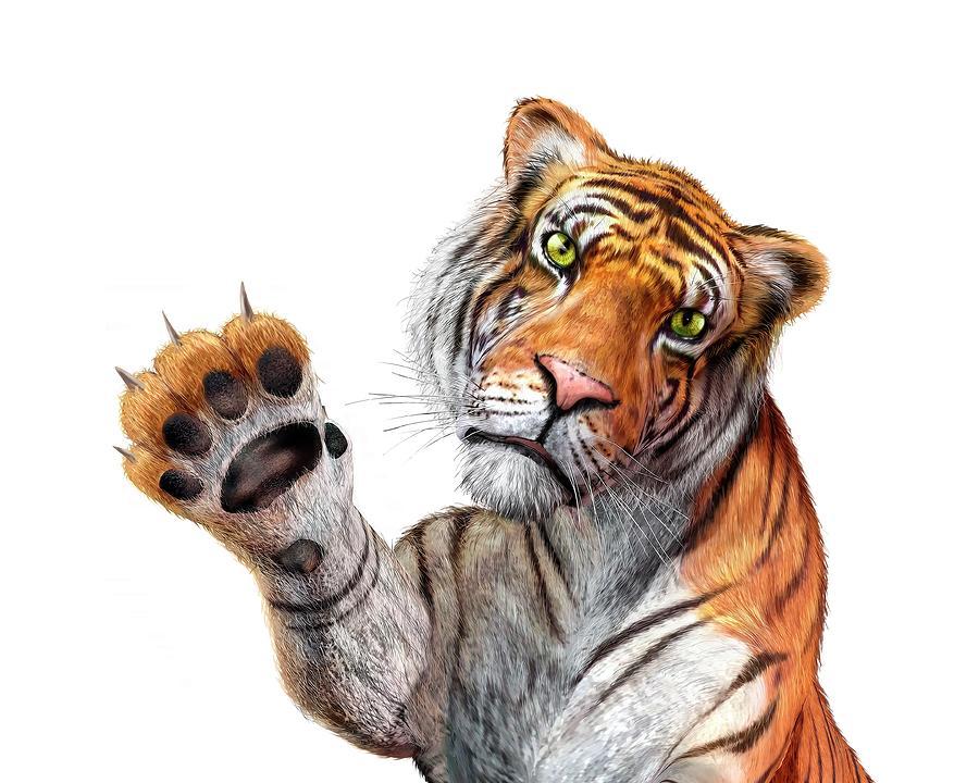 Tiger, Artwork Digital Art by Leonello Calvetti
