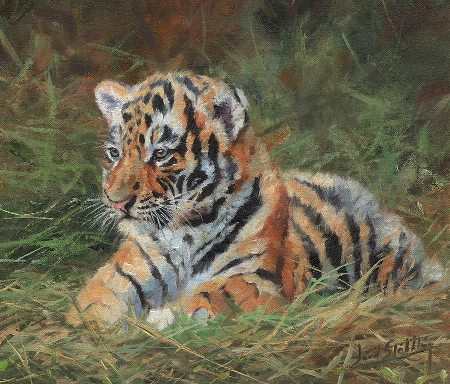 Tiger Cub in Grass by David Stribbling