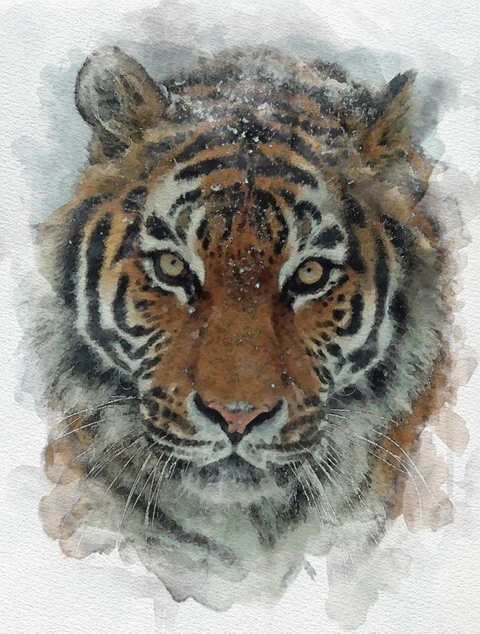 Tiger Eye Watercolor Painting Christmas Gift Digital Art By Nabil El