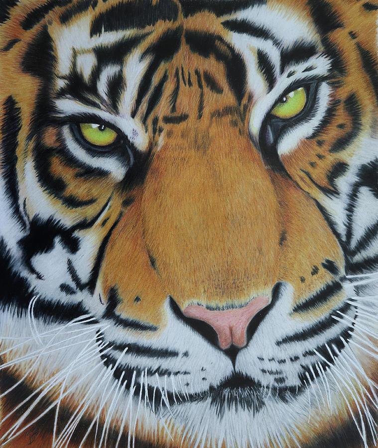 Tiger King Painting - Tiger King by Melanie Feltham