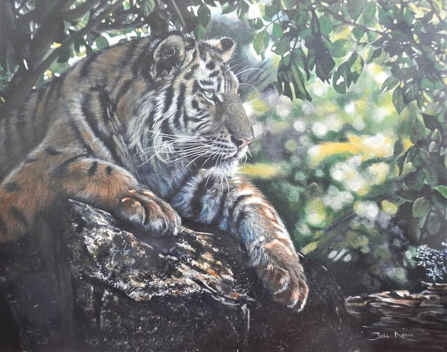 Shady Tiger by John Neeve
