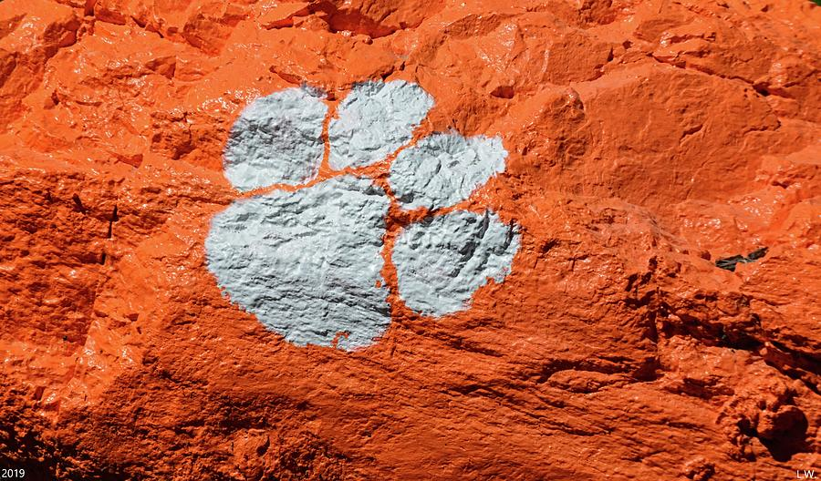 Tiger Paw Photograph - Tiger Paw by Lisa Wooten